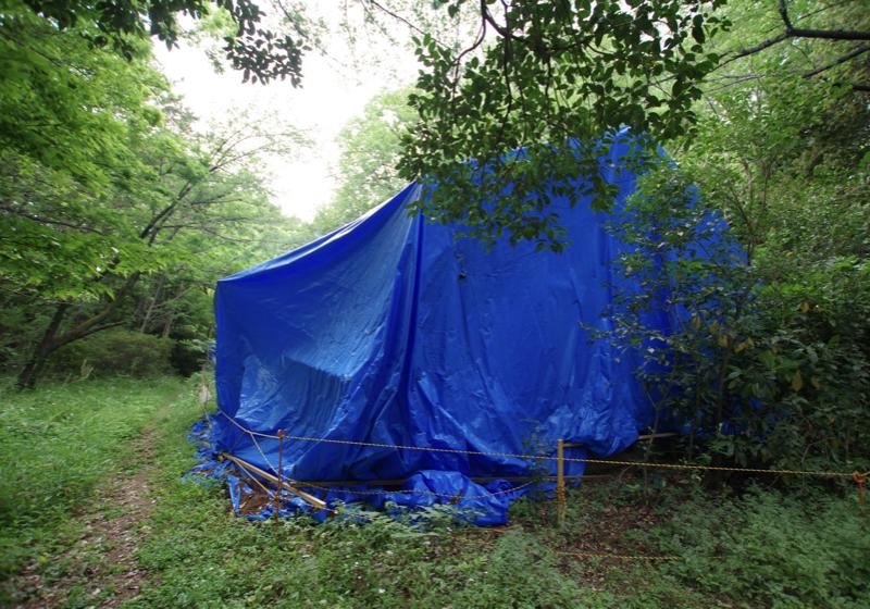 深い森の中のブルーシートは、切り妻屋根の悲しい「住まい」