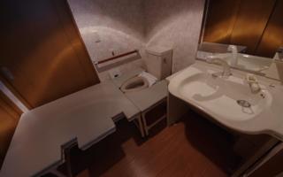 賃貸マンションの広いトイレを、お座敷トイレに
