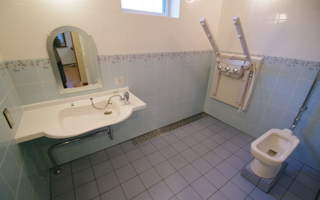 シャワー浴ができ、天井リフトも付いた、多機能、多目的な洗面室